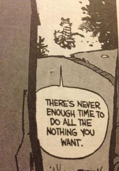 calvin and hobbes.  Most favorite comic strip of all time...