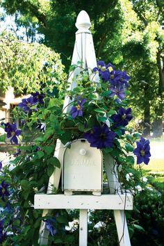 Mailbox Trellis Landscapemailbox Blue Clematis Outdoor Gardens Garden Tools Art