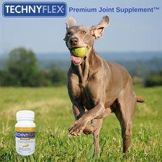 http://moderndogmagazine.com/blogs/modern-pets/technyflex-naturally-helps-your-dogs-arthritis