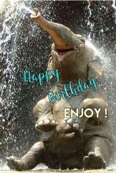 Happy birthday wishes for brother funny birthday status for brother birthday funny.Hilarious memes make your bro laugh,smile,irritate and crazy.