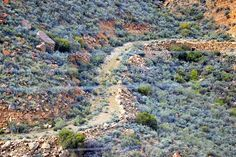 Kredouw Pass Nature reclaiming the old pass Mountain Pass, Homeland, South Africa, City Photo, Beautiful Places, Landscapes, Old Things, African, Country