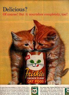 cat ads - Google 検索
