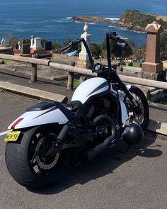 Black Panther Art, Harley Davidson V Rod, Cool Motorcycles, Picture Credit, Sport Bikes, Custom Bikes, Helmets, Porn, Objects