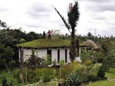 ways to increase your roof's cooling power