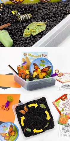 Help kids learn about the Monarch Butterfly's life cycle with this easy, engaging sensory bin! Easy Crafts For Kids, Toddler Crafts, Preschool Crafts, Child Teaching, Kids Learning, Creative Activities For Kids, Butterfly Life Cycle, Butterfly Crafts, Dollar Tree Store