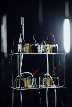 Neural: Interspecifics Micro-ritmos, AI orchestrating bacteria http://neural.it/2017/06/micro-ritmos-ai-orchestrating-bacteria/