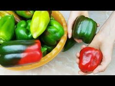 I don't buy pepper anymore in winter! 5 Super Ways to Store Bell Peppers. Crepes, Food Videos, New Recipes, Harvest, Stuffed Peppers, Make It Yourself, Vegetables, Cooking, Youtube
