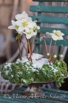julros blomsterverkstad minna mercke schmidt