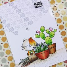 Made by Al Handmade: Sweet succulents, I knead you.