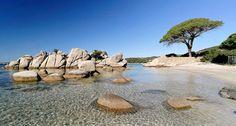 Palombaggia Beach - Porto Vecchio - Corsica