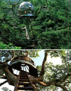 Modern Tree Houses: 14 Awesome Arboreal Dwelling Designs pinned with Pinvolve - pinvolve.co