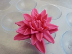 no cutters needed for this beautiful flowers, tutoril