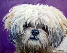 Lhasa Apso Art 8x10 Dog Art Print, on Purple, by Dottie Dracos ...