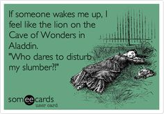 If someone wakes me up, I feel like the lion on the Cave of Wonders in Aladdin. 'Who dares to disturb my slumber?!'