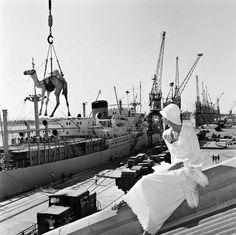 Gian Paolo Barbieri - Jill Kellington, Vogue Francia, Port Sudan, 1974.