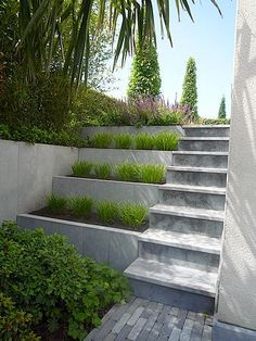 Exterior Stairs Concrete Grass Ideas For 2019 Garden Stairs, Terrace Garden, Small Terrace, Garden Beds, Modern Landscaping, Backyard Landscaping, Landscaping Ideas, Landscape Design, Garden Design