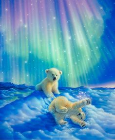 3d Full Diamond Embroidery Home Decor Diamonds Mosaic Painting Pasted Pictures Square Drill Northern Lights Baby polar bear d018