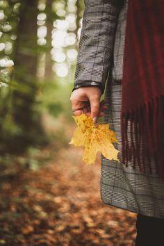 Photography Poses Women, Autumn Photography, Creative Photography, Portrait Photography, Fall Pictures, Fall Photos, Fall Portraits, Perspective Photography, Autumn Scenery