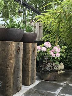 #Modern #Plants Amazing Modern Yard Decor