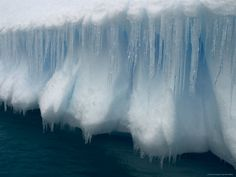 Icicles drape the sides of an iceberg in the waters around Antarctica. Fifth-largest of the world's continents, Antarctica comprises square miles square kilometers) of snow-topped glaciers and ice sheets with less than 5 percent ice-free.