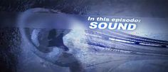 Waves of sound let NASCAR fans feel and hear the power of race car engines
