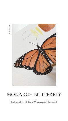 Butterfly watercolor painting tutorial Monarch Butterfly watercolor painting tutorial Monarch Katrina Crouch Fine Artist And Educator blusheddesigns BLUSHED DESIGN Fine art illustrations nbsp hellip Painting videos Butterfly Drawing, Butterfly Painting, Butterfly Watercolor, Monarch Butterfly, Watercolor Paintings, Drawing Flowers, Painting Flowers, Butterfly Illustration, Watercolors