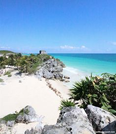 (via TRIED & TESTED: PAPAYA PLAYA PROJECT TULUM - Petite Passport » Petite Passport)