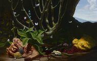Entre macabre et fantastique avec Christian Rex van Minnen Organic Matter, T Rex, Macabre, 21st Century, Les Oeuvres, Still Life, Paint Colors, Vans, Christian
