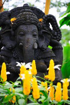 Deity by Jason Ho Ganesha, la querida deidad con cabeza de elefante, que es la diosa de los nuevos comienzos y la que elimina los obstáculos.