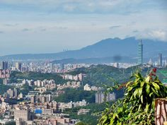 What To Do In Taichung Colorful Taichung Travel Guide For