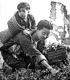 Chinese mother in the 1940s, collecting wild herbs to make meals