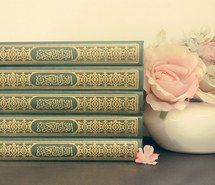 Inspiring image arabic, faith, flowers, heart, islam, love, muslim, photography, pink, quran #1557796 by aaron_s - Resolution 500x333px - Find the image to your taste