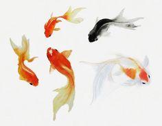 Goldfish Art, Watercolor Goldfish Painting, Sumie Fish Art Print, Goldfish Gift…