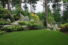 plantes couvre sol, gazon, pierres et arbres géants pour un jardin moderne