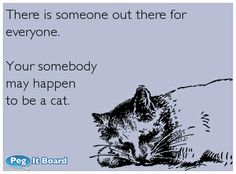 There is someone out there for everyone.  Your somebody may happen to be a cat.