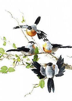 Leaves are Falling - Σετ 8τχ διακοσμητικά πουλιά, 10cm Bird, Animals, Animales, Animaux, Birds, Animal, Animais