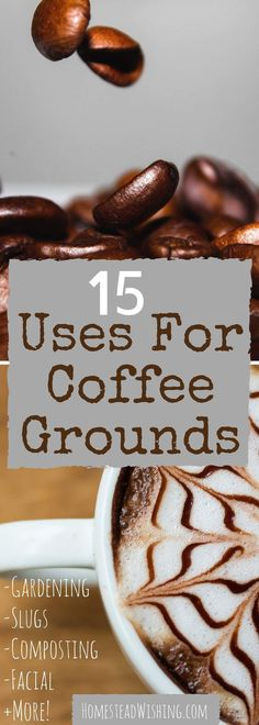 15 Uses for coffee grounds. I am pretty amazed at all the things you can do with coffee grounds. Hair, compost, garden, odor removal, playdough and more! | Homestead Wishing, Author Kristi Wheeler | coffee-ground-uses, gardening-coffee, uses-for-coffee-grounds |