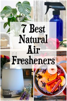 Need to eliminate pet smells or cooking smells without harmful chemicals? Use one of these 7 natural air fresheners and your house will smell amazing all the time. Natural Air Freshener, Home Air Fresheners, Cleaning Recipes, Cleaning Hacks, Simmering Potpourri, Homemade Potpourri, Essential Oils Cleaning, Organic Cleaning Products, Home Scents