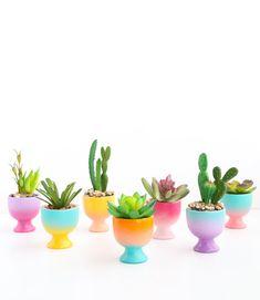 DIY Mini Gradient Egg Cup Planters – A Beautiful Mess