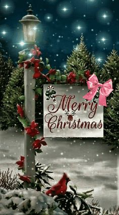 Merry Christmas Wallpaper, Merry Christmas Pictures, Christmas Scenery, Merry Christmas Images, Merry Christmas Wishes, Noel Christmas, Christmas Greetings, Vintage Christmas, Holiday Wallpaper