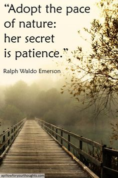 Adopt the pace of nature: her secret is patience -Ralph Waldo Emerson #inspiration #quote