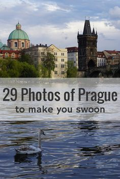 29 photos that will prove that Prague is one of the most beautiful cities in Europe. You will love their Medieval & Baroque Architecture, Fairytale- like Castles and Secret Gardens. Plus, their food and beer are amazing and cheap! Make sure to put Prague on your bucketlist!