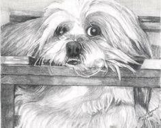 Popular items for custom shih tzu on Etsy