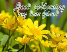 GoodMorning - Daily Pictures, Animated Pics & Wishes. #EverydayEcards, #GOODMORNING http://greetings-day.com/goodmorning-daily-pictures-animaed-pics-wishes.html