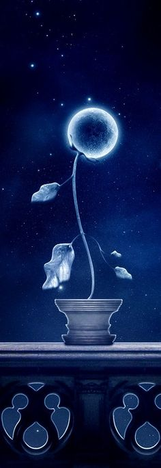 »✿❤Blue❤✿« moon flower