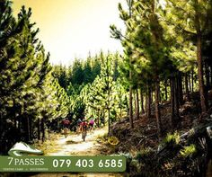 What more can you ask then having the beauty of Mother Nature surrounding you, while exploring on various trails near Mountain Biking, Mother Nature, Wilderness, Exploring, Vineyard, Trail, Country Roads, Activities, Canning