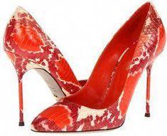 52d557a98f6 45 Best Shoes images