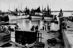 Nettoyage des casiers sur le port de Lesconil dans les années 50