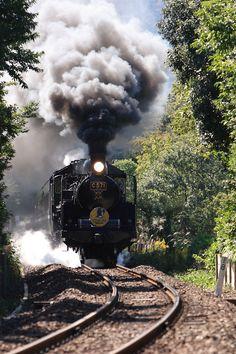 Steam Locomotive C571 (SL やまぐち号)
