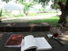 버드나무 아래서 여름을 읽다